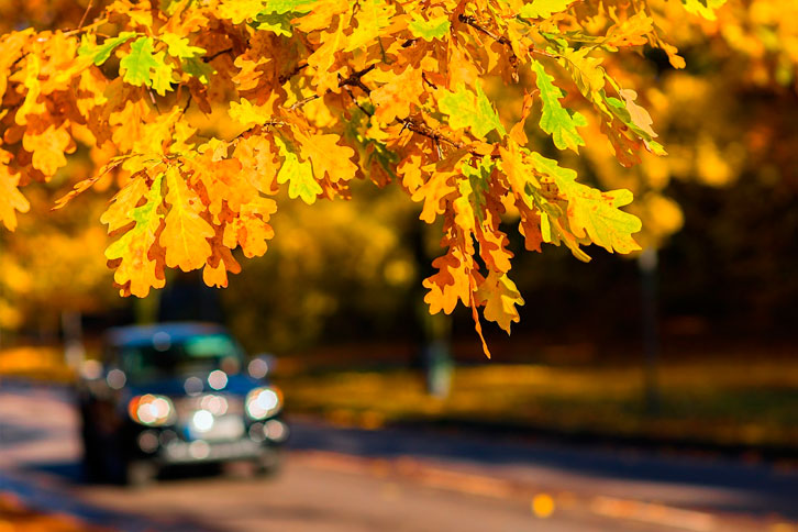 car with working windshield driving in the fall season